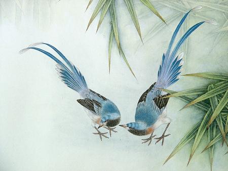 Птицы ицветы. Изображение № 20.