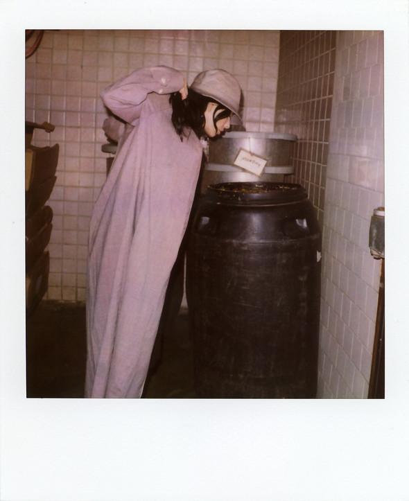 Scott Sternberg, старый поляроид иголливудские актрисы. Изображение № 43.
