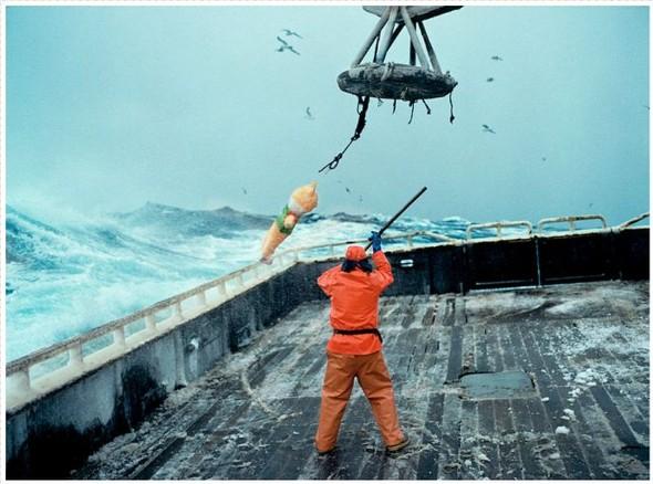 Corey Arnold. Морская фотография. Изображение № 1.