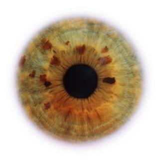 Фотограф Rankin — Eyescapes. Изображение № 11.