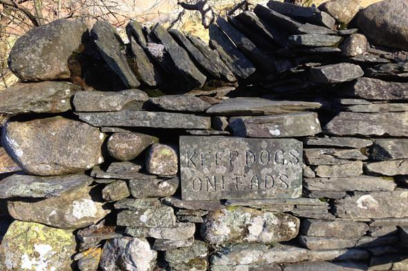 Великобритания: Водопады, тишина, сидры и прогулки по Озерному краю. Изображение № 18.