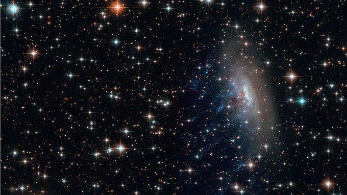 Учёные обнаружили в космосе «сбежавшие» галактики . Изображение № 1.