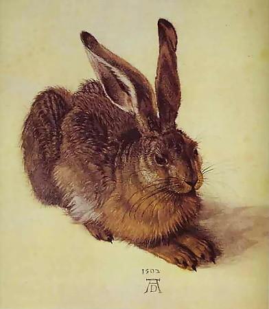 АЛЬБРЕХТ ДЮРЕР (1471–1528). Изображение № 4.