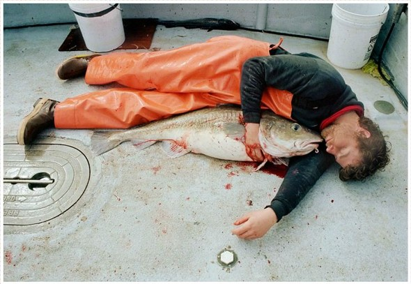Corey Arnold. Морская фотография. Изображение № 13.