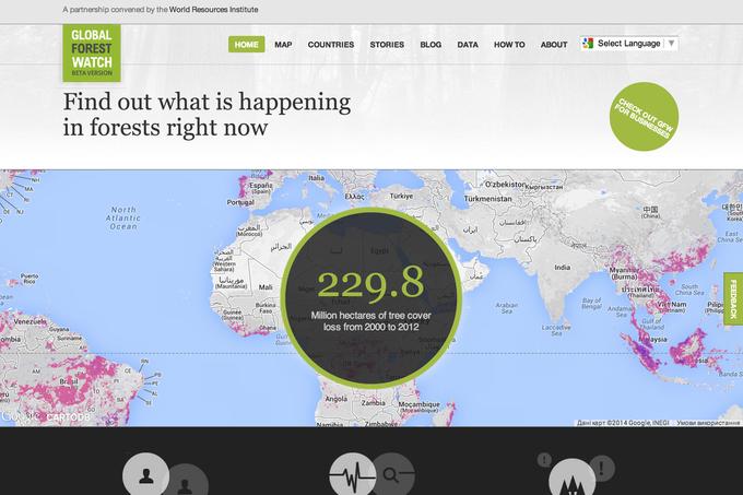 Появилась интерактивная карта мировых лесов. Изображение № 1.