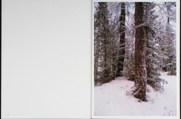7 альбомов об абстрактной фотографии. Изображение № 79.