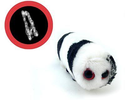 Плюшевые микробы. Изображение № 9.