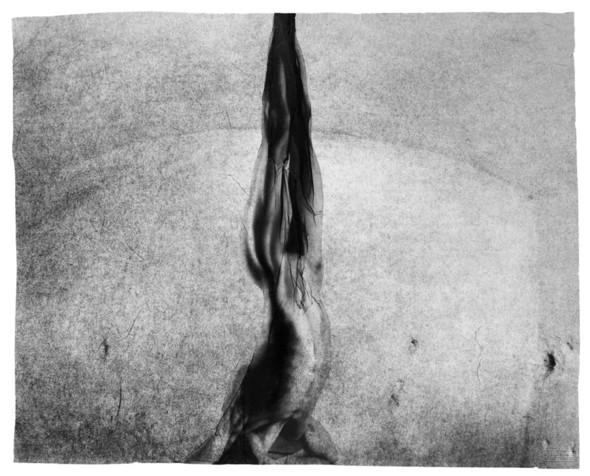 Фотограф: Michal Macku. Изображение № 17.