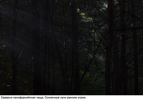 Фотограф – Ноэль Люсано. Изображение № 17.