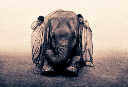 "Gregory Colbert's ""Ashes and Snow"". Изображение № 4."
