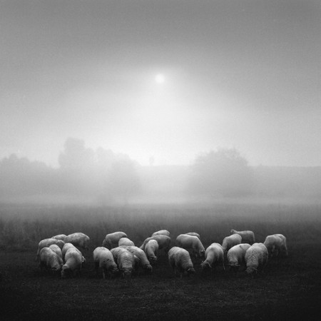 Фото Dariusz Klimczak. Изображение № 17.