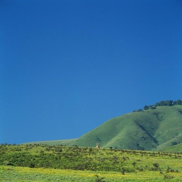 Танзания. Кратер Нгоронгоро. Изображение № 2.