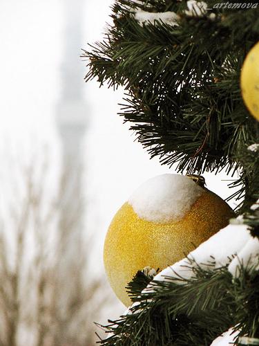 Популярный тэг-christmas. Изображение № 6.