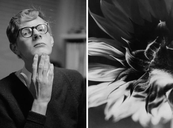 Фотографии Линды Маккартни. Изображение № 31.