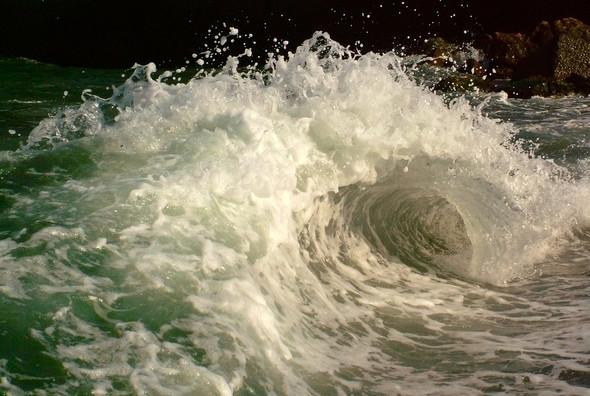 Морская поэзия. Изображение № 7.