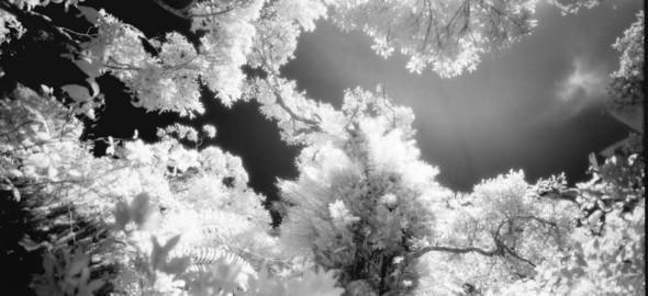 Невидимый мир на грани тепла и света. Выставка Арсена Ревазова. Изображение № 2.