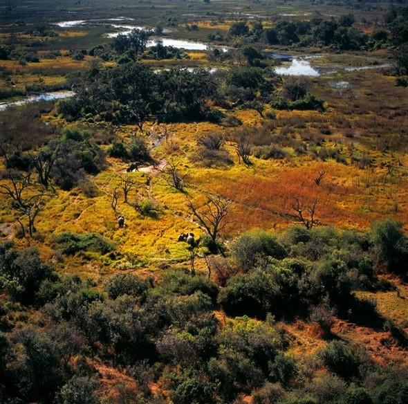 Ботсвана. Изображение № 3.