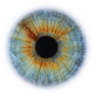 Фотограф Rankin — Eyescapes. Изображение № 2.