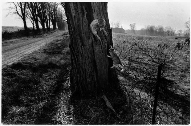 Современные мастера фотографии. Larry Towell. Изображение № 8.