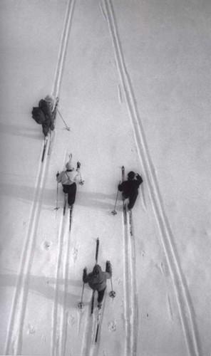 Лыжники, 1957 г.. Изображение № 164.