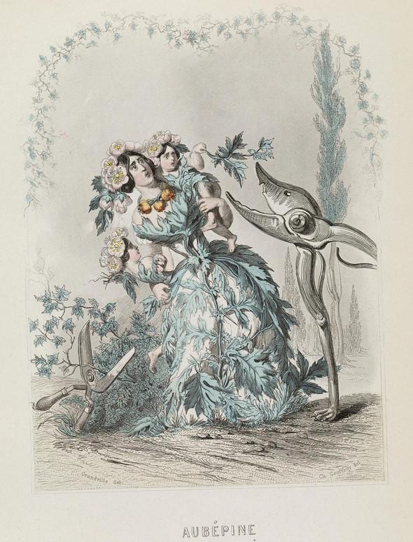Винтажные иллюстрации J.J. Grandville. Изображение № 13.