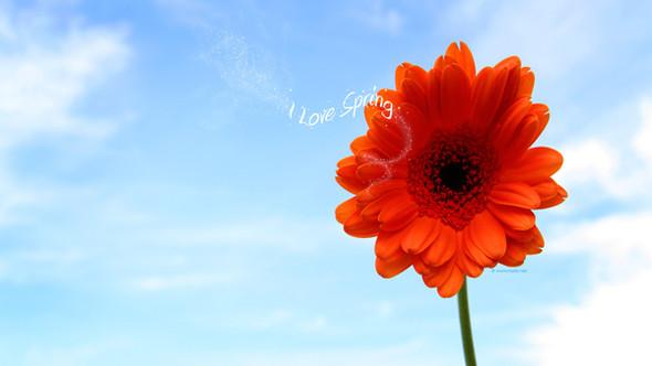 Весна идет! Создаем весеннее настроение. Изображение № 18.