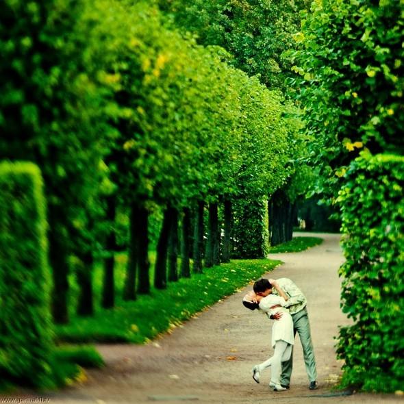Любовь ботаника (попса) - non stop. Изображение № 6.