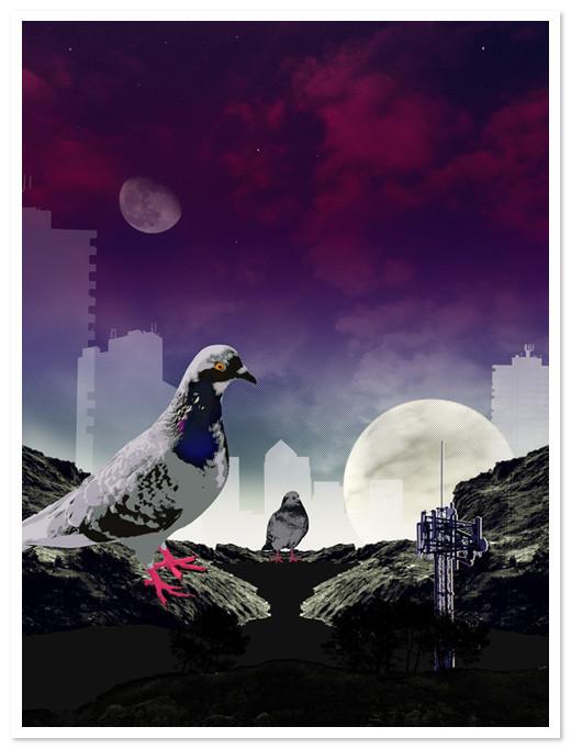 Birds Of Claire. Изображение № 20.