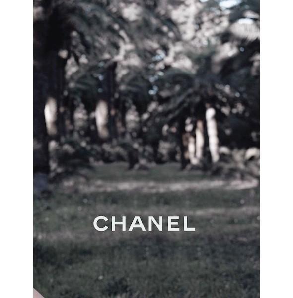 Изображение 15. Рекламные кампании: Chanel, Donna Karan, Stella McCartney и другие.. Изображение № 15.