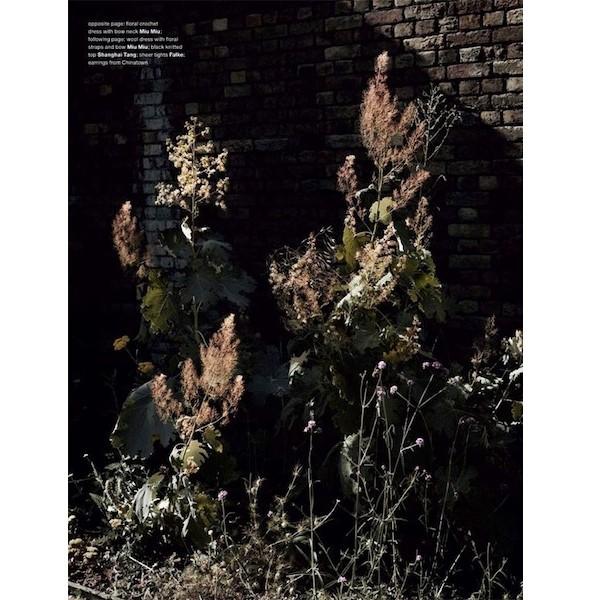 5 новых съемок: Dossier, Muse и Vogue. Изображение № 38.
