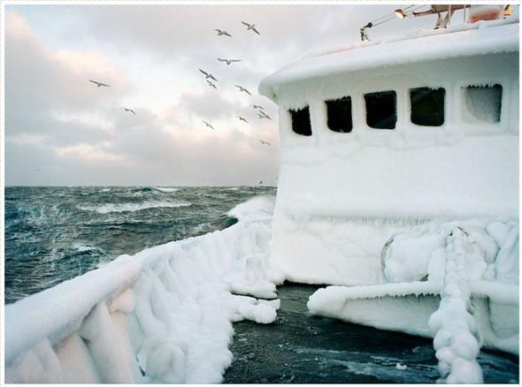 Corey Arnold. Морская фотография. Изображение № 12.