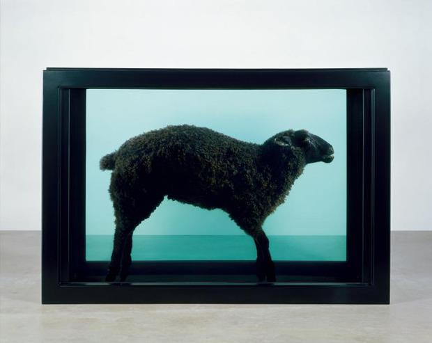 Black Sheep, Дэмиен Хёрст, 2004. Изображение №8.