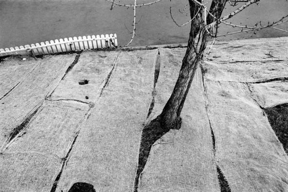 Первая открытая национальная премия «Лучший Фотограф». Изображение № 15.