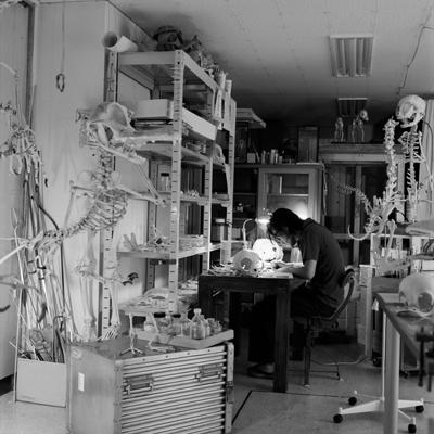 Мультяшные скелеты вшкафу ХюнгкуЛи. Изображение № 11.