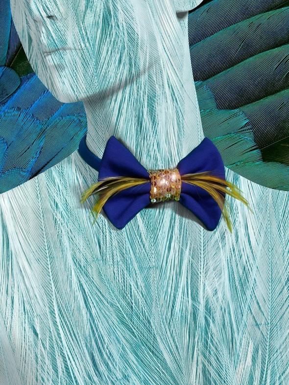 Стильные бабочки для принцев и принцесс от Nesty Odina. Изображение № 11.
