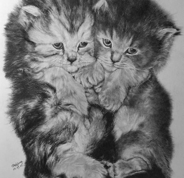 Paullung.и его коты. Изображение № 15.