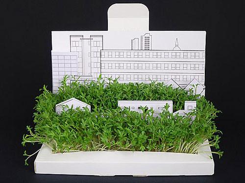 PostCarden - сад на вашем столе. Изображение № 9.