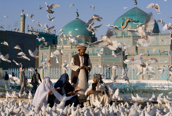 Афганистан. Военная фотография. Изображение № 239.