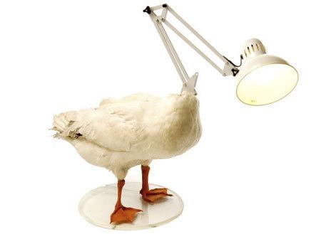 40 Чудных ламп. Изображение № 45.