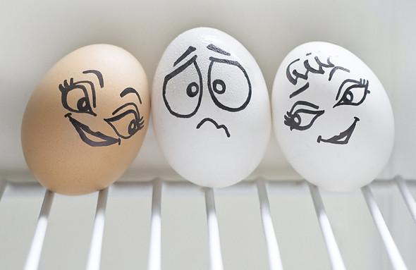 Удивительная жизнь яиц. Изображение № 18.