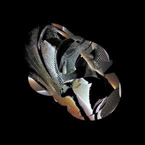 Новый релиз: Damscray «Blot Method». Изображение № 2.