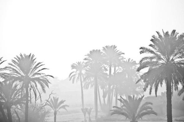 Черно-белые путешествия. Изображение № 111.