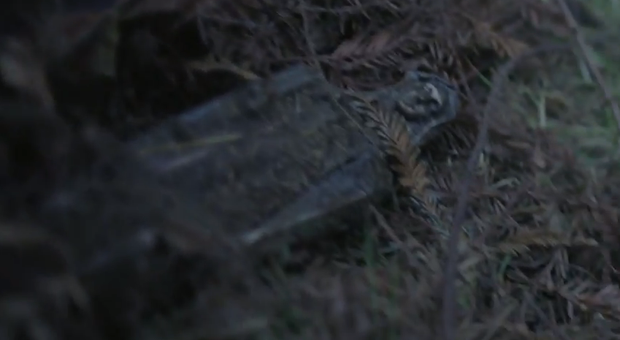 Первые пять минут нового сезона «Американской истории ужасов» можно посмотреть на YouTube. Изображение № 3.