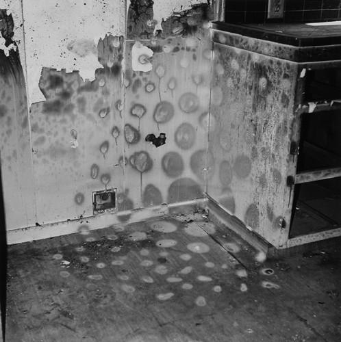 John Divola. Фотографический вандализм. Изображение № 4.