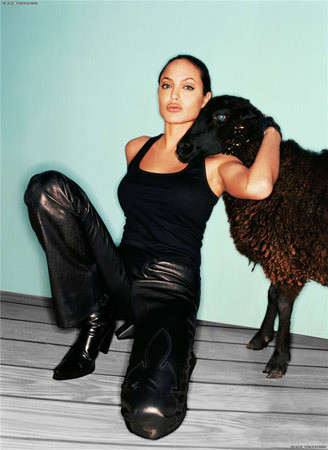 Анджелина Джоли. Изображение № 161.