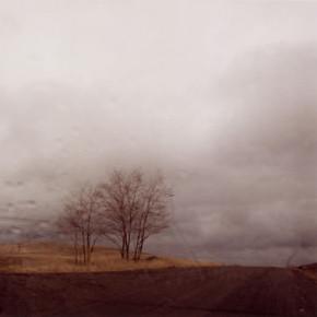 Прорыв: «Грозовой перевал» Андреа Арнольд. Изображение № 27.