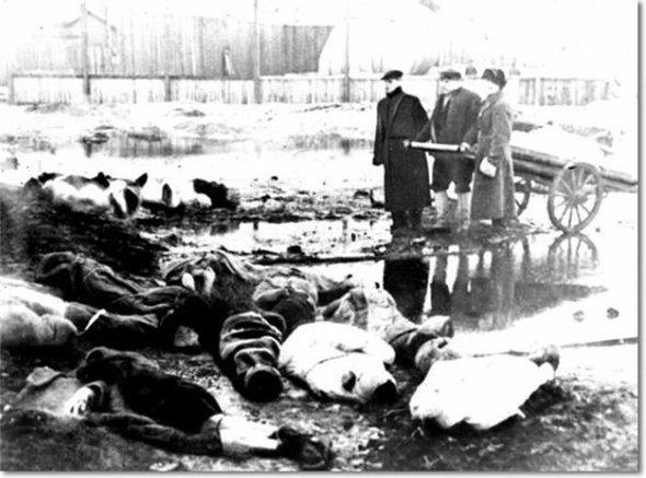 Блокада ленинграда. Изображение № 23.
