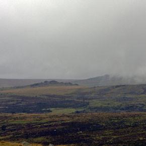 Прорыв: «Грозовой перевал» Андреа Арнольд. Изображение № 31.