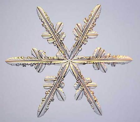 Снежинки – временные произведения искусства. Изображение № 16.