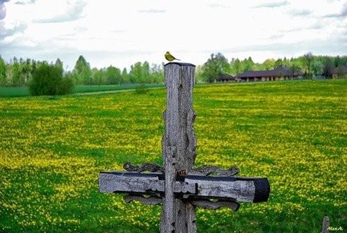 Только потому что крест-часть вторая. Изображение № 128.